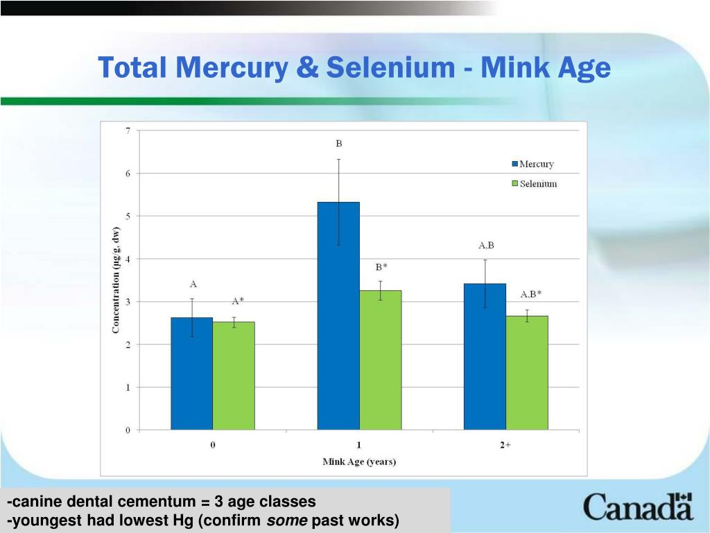 Total Mercury & Selenium - Mink Age