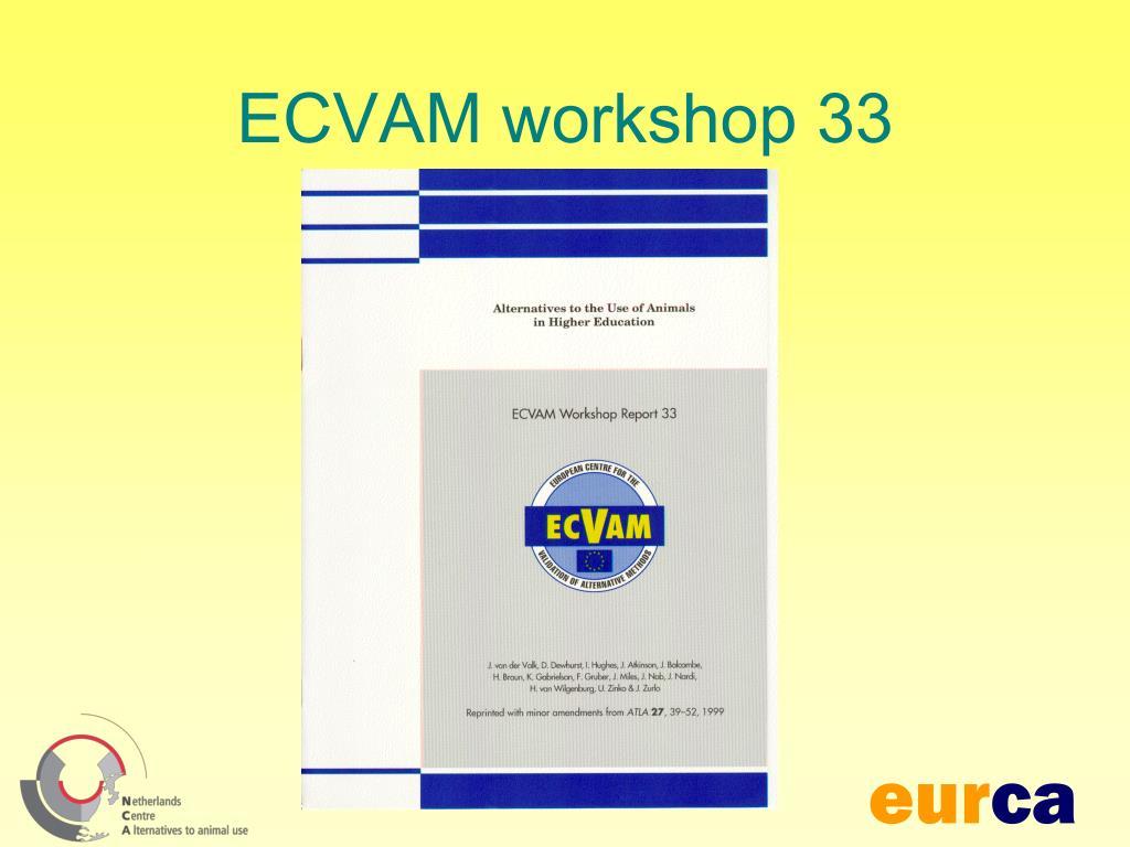 ECVAM workshop 33