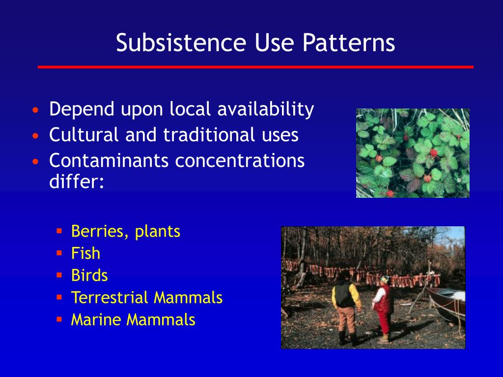 Subsistence Use Patterns