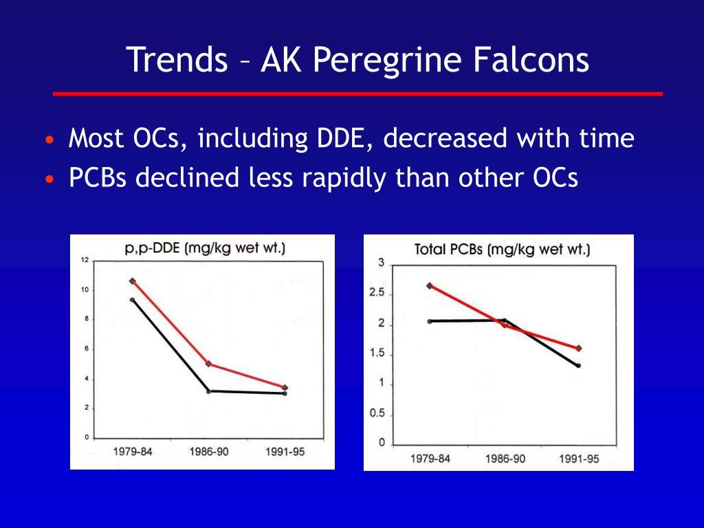 Trends – AK Peregrine Falcons