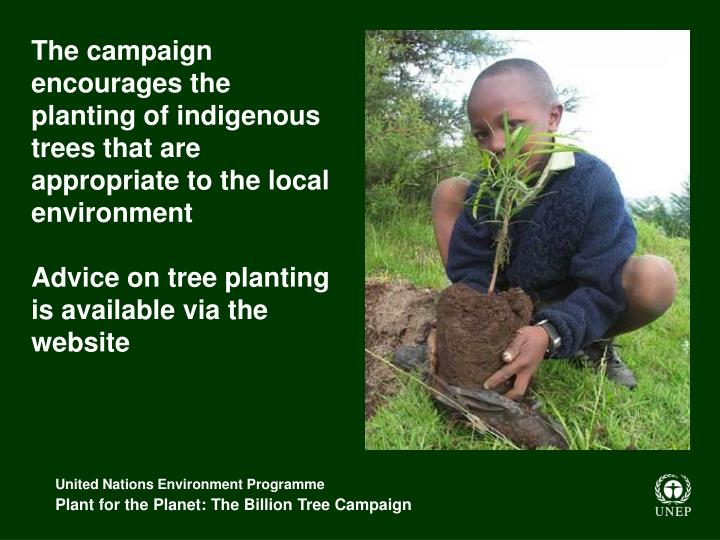 The campaign encourages the planting of indigenous trees that are appropriate to the local environment