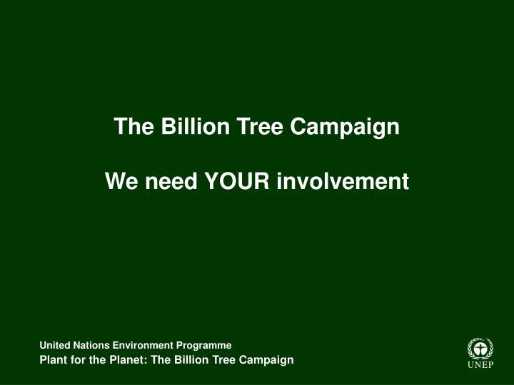 The Billion Tree Campaign