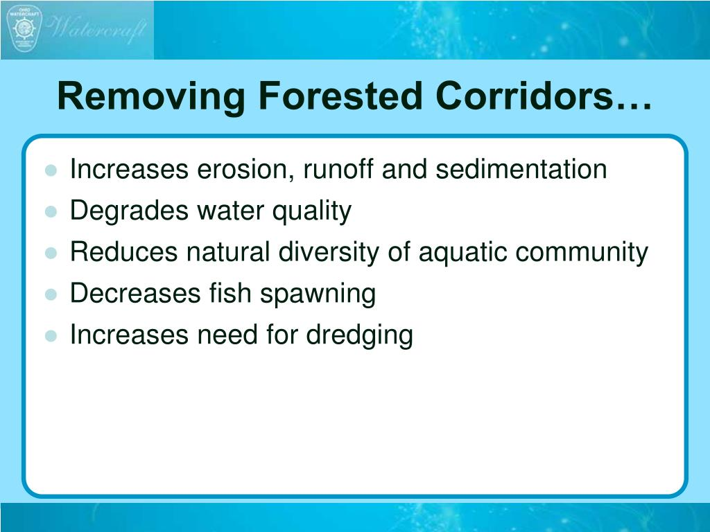 Removing Forested Corridors…