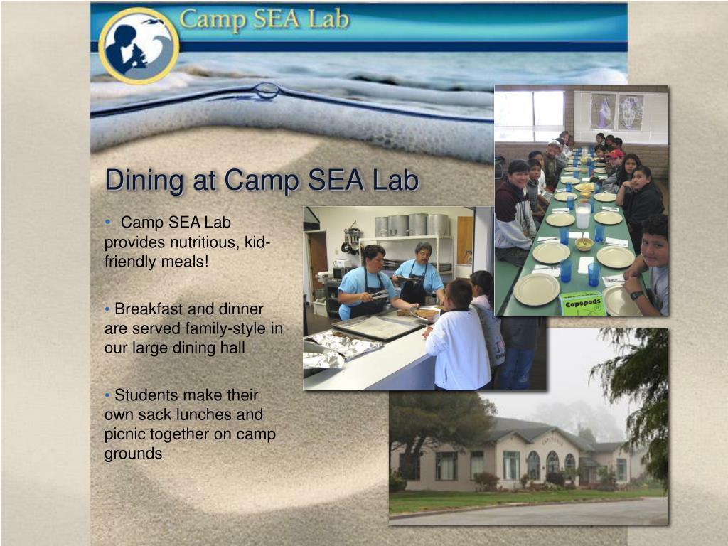 Dining at Camp SEA Lab