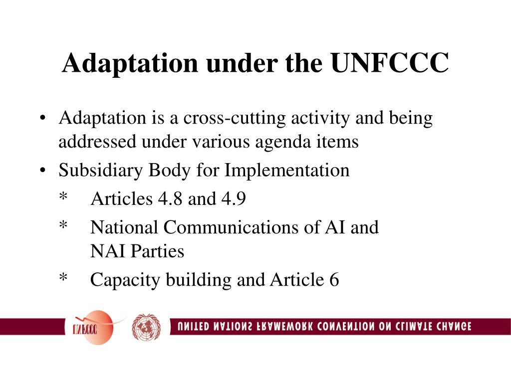 Adaptation under the UNFCCC