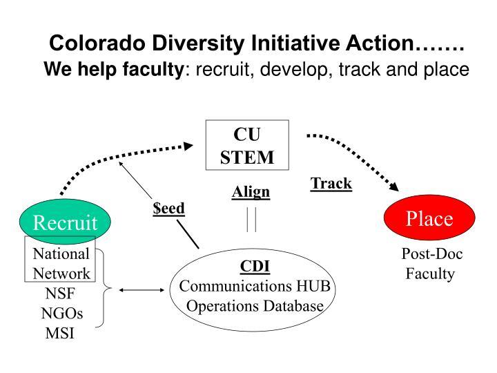 Colorado Diversity Initiative Action…….