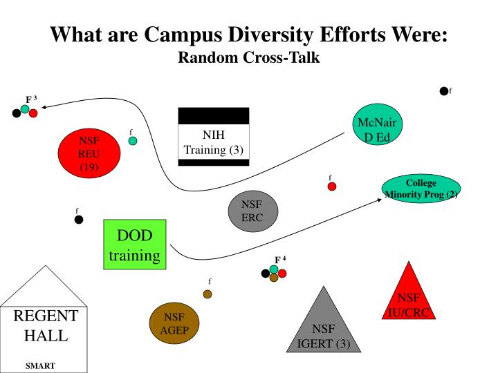 What are Campus Diversity Efforts Were: