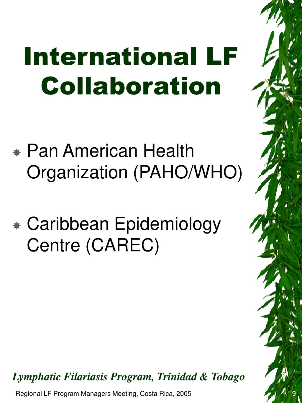 International LF Collaboration