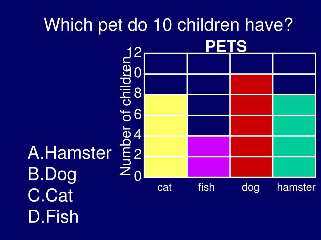 Which pet do 10 children have?
