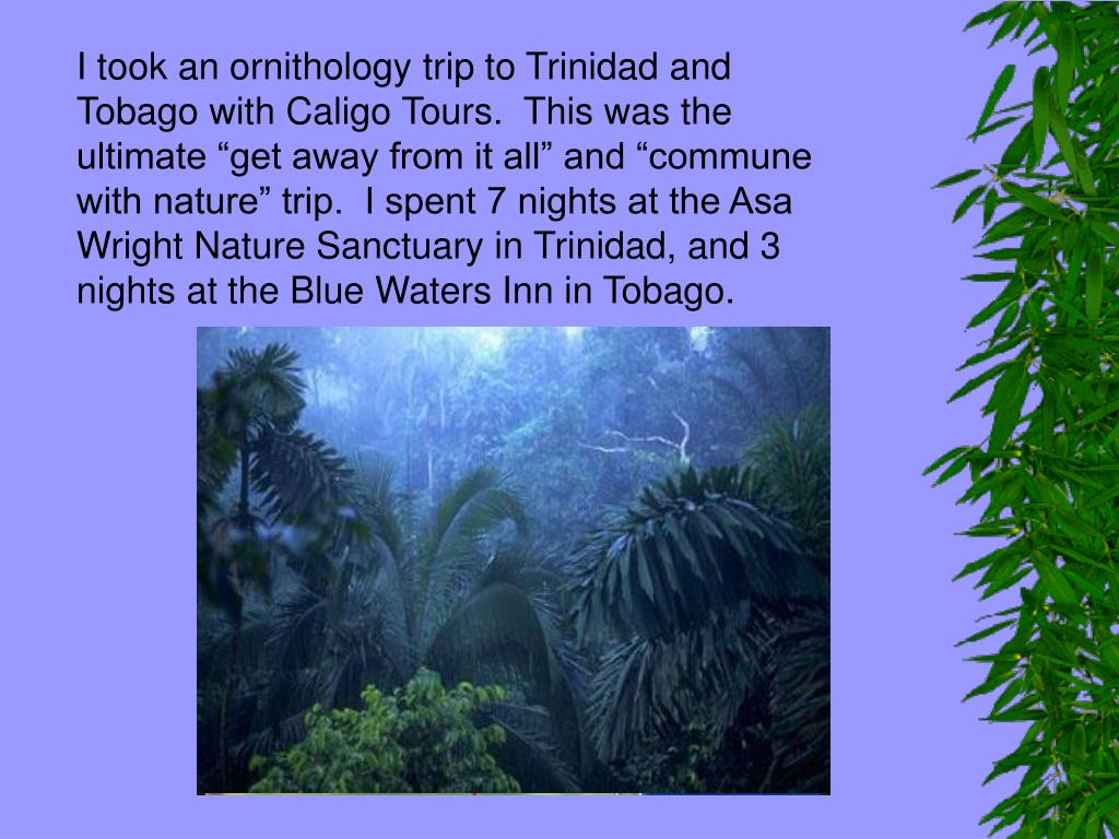 "I took an ornithology trip to Trinidad and Tobago with Caligo Tours.  This was the ultimate ""get away from it all"" and ""commune with nature"" trip.  I spent 7 nights at the Asa Wright Nature Sanctuary in Trinidad, and 3 nights at the Blue Waters Inn in Tobago."