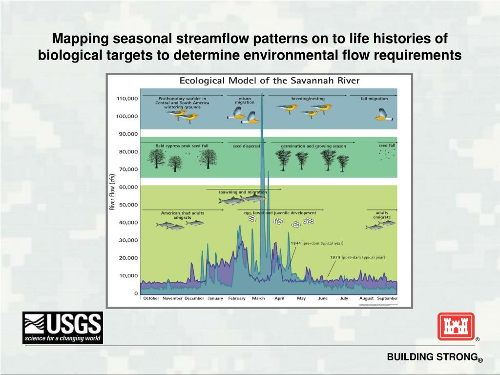 Mapping seasonal streamflow patterns on to life histories of biological targets to determine environmental flow requirements