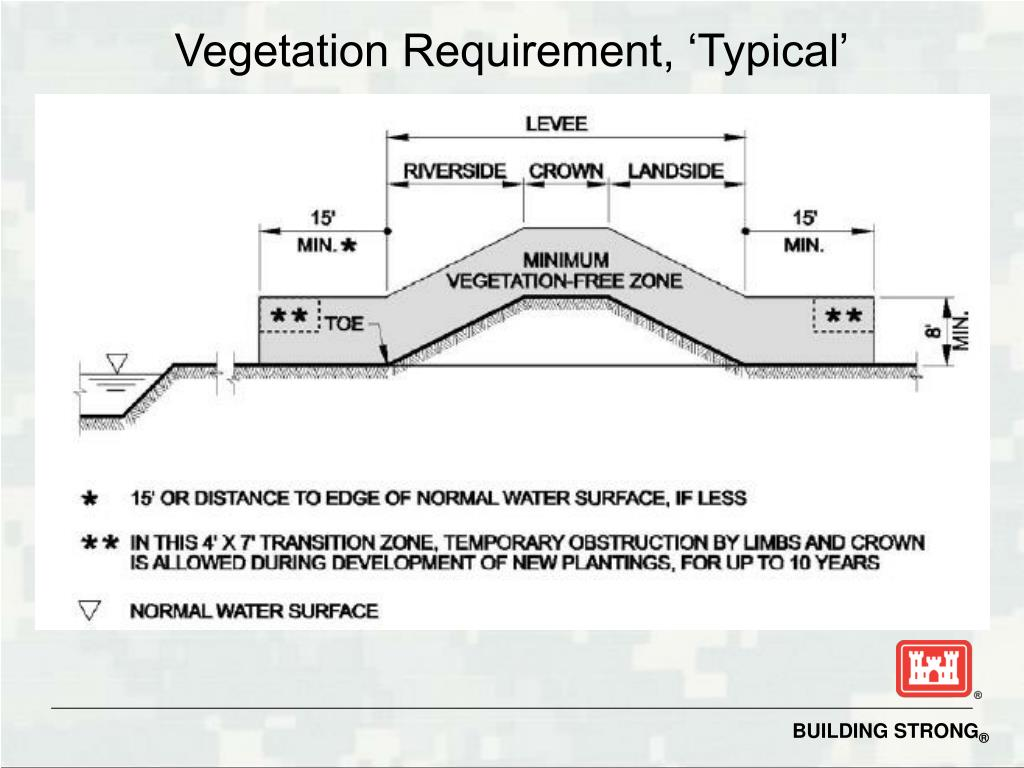 Vegetation Requirement, 'Typical'