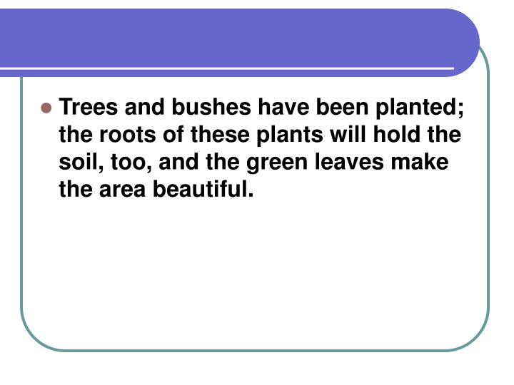 Trees and bushes have been planted; the roots of these plants will hold the soil, too, and the green...