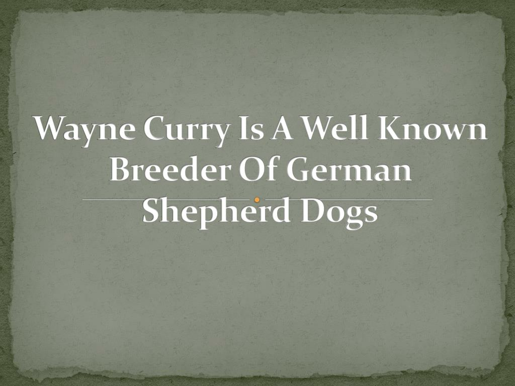 Wayne Curry Is A Well Known Breeder Of German Shepherd Dogs