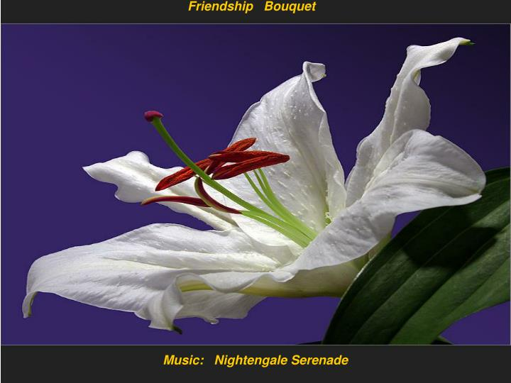 Friendship   Bouquet