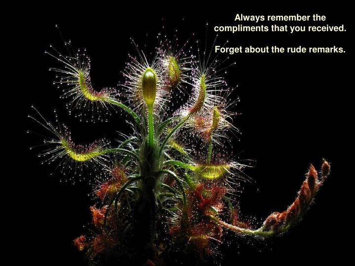 Always remember the compliments that you received.