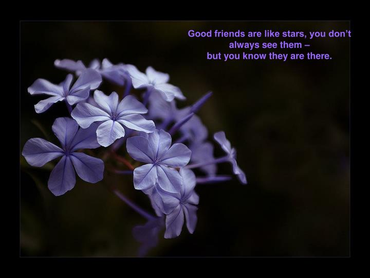 Good friends are like stars, you don't always see them –