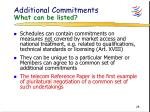 additional commitments what can be listed