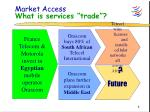 market access what is services trade