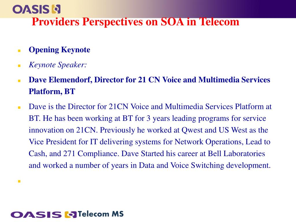 Providers Perspectives on SOA in Telecom