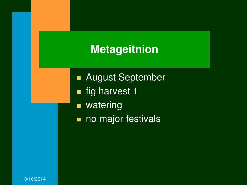 Metageitnion