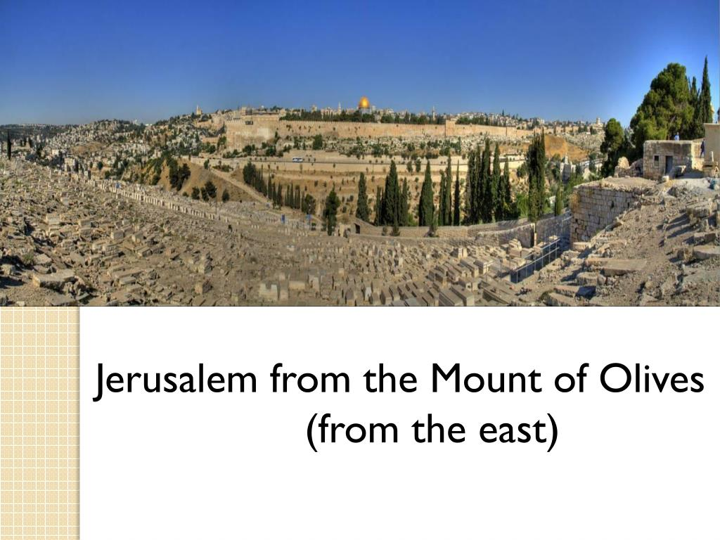 Jerusalem from the Mount of Olives 			       (from the east)