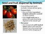 seed and fruit dispersal by animals