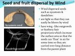 seed and fruit dispersal by wind