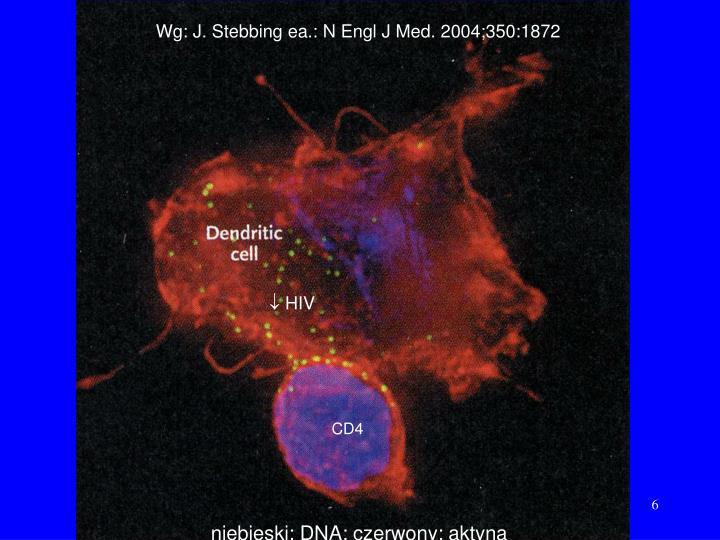 Wg: J. Stebbing ea.: N Engl J Med. 2004;350:1872