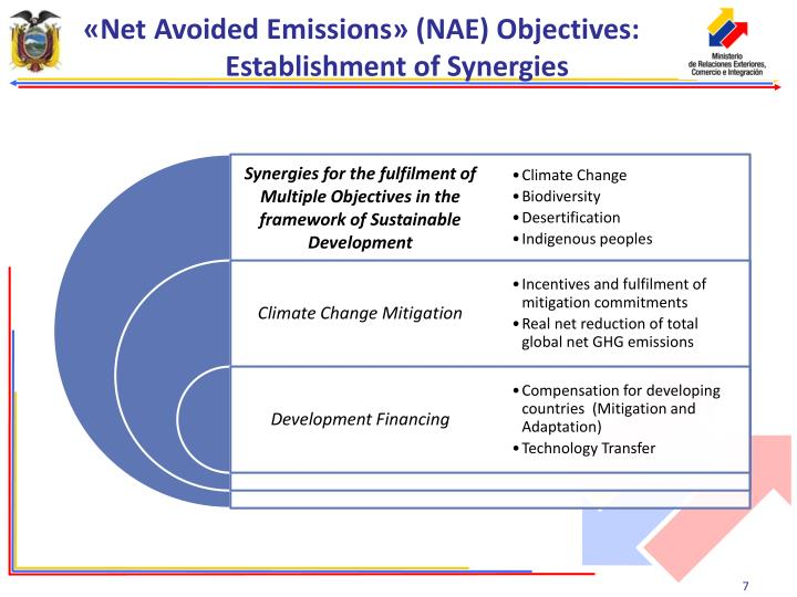 «Net Avoided Emissions» (NAE) Objectives: Establishment of Synergies