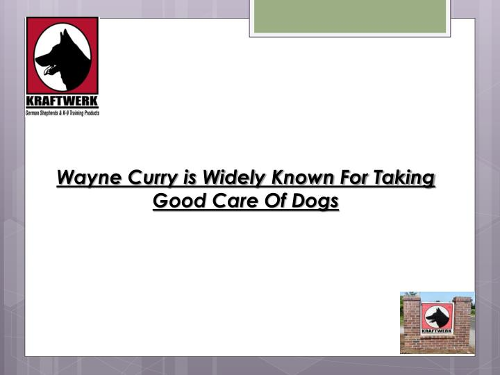 Wayne Curry is Widely Known For Taking Good Care Of Dogs