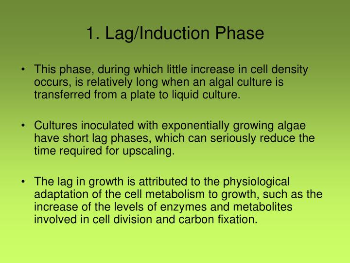 1. Lag/Induction