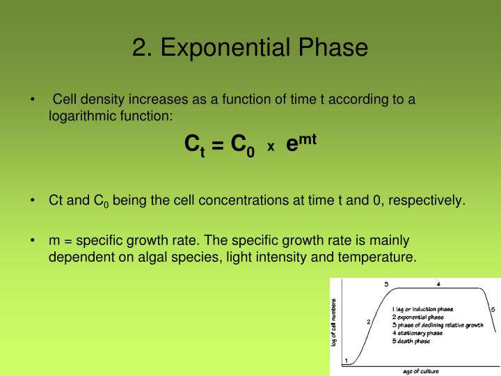 2. Exponential
