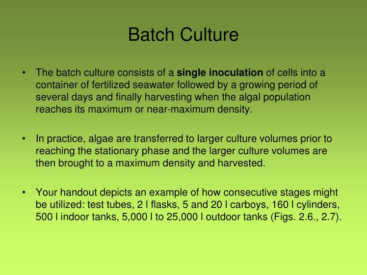 Batch Culture