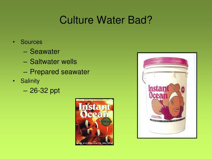 Culture Water Bad?