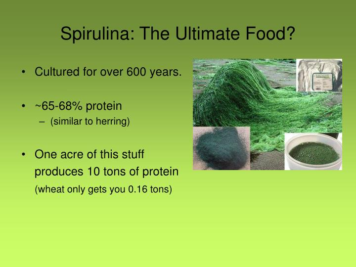 Spirulina: The Ultimate Food?