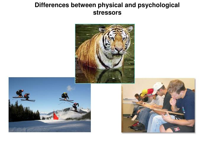 Differences between physical and psychological stressors