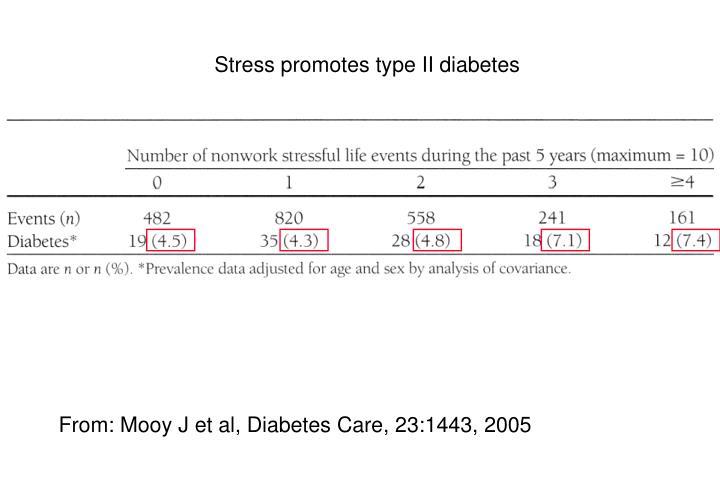 Stress promotes type II diabetes