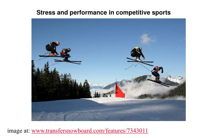 Stress and performance in competitive sports