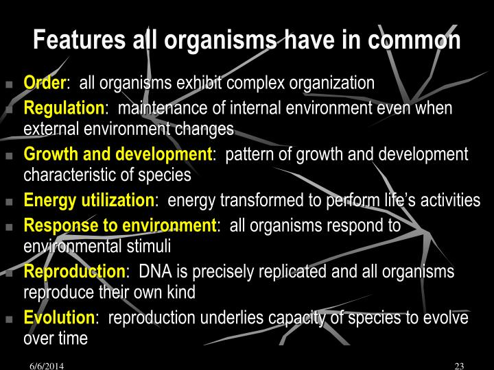 Features all organisms have in common