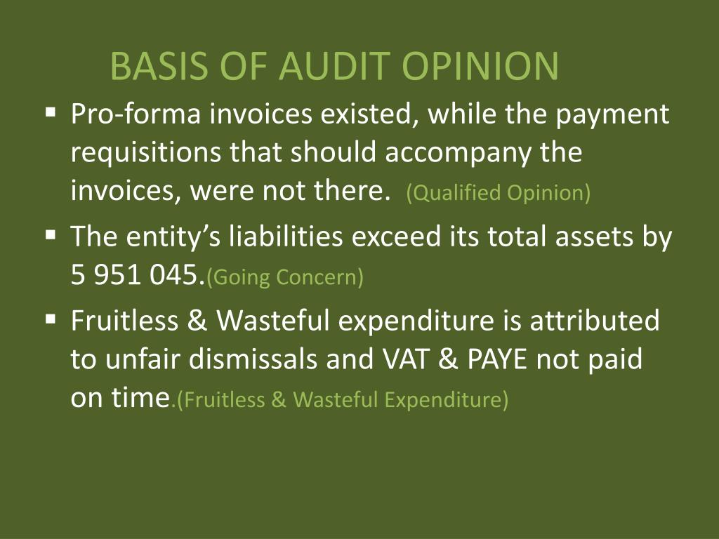 BASIS OF AUDIT OPINION