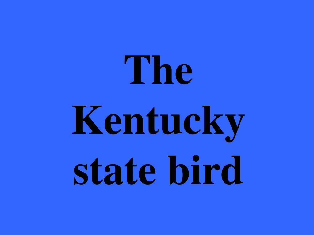 The Kentucky state bird