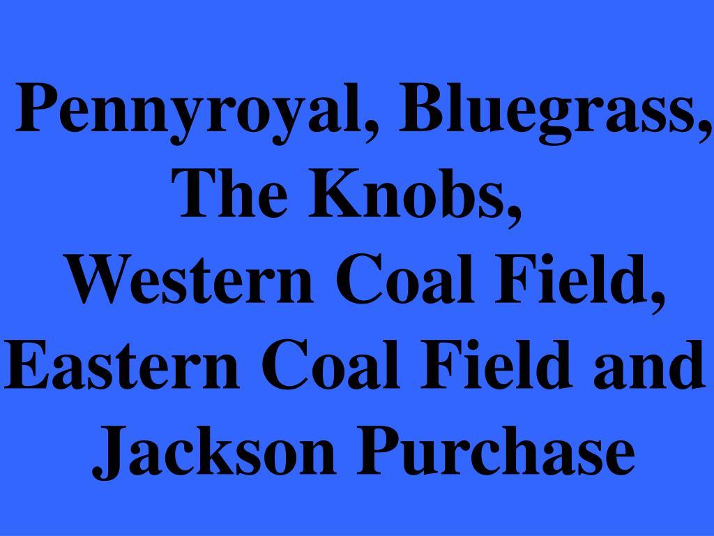 Pennyroyal, Bluegrass,