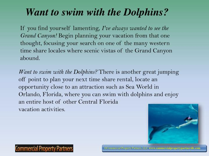 Want to swim with the dolphins