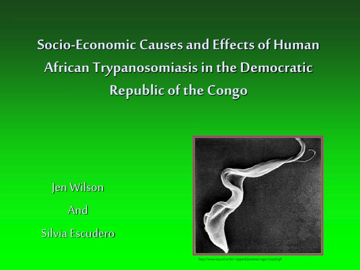 Socio-Economic Causes and Effects of Human African Trypanosomiasis in the Democratic Republic of the...