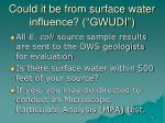 could it be from surface water influence gwudi