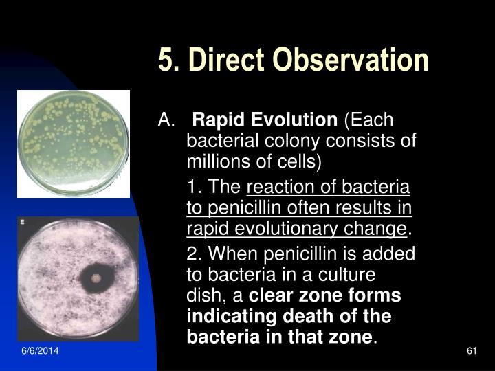 5. Direct Observation