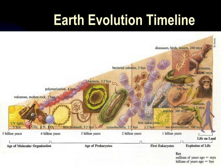 Earth Evolution Timeline