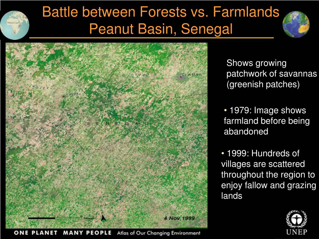 Battle between Forests vs. Farmlands