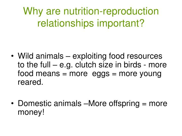 Why are nutrition reproduction relationships important l.jpg